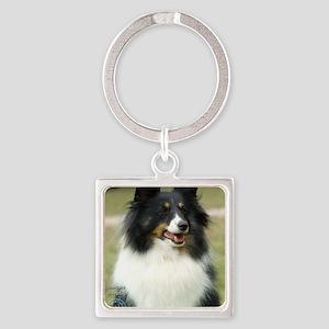 Shetland Sheepdog 9J089D-19 Square Keychain