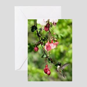 HBird7.75x9.25SF Greeting Card