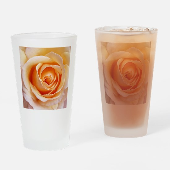 AFP 21a Creamy orange rose Drinking Glass