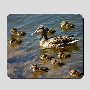 Big ducky family Mousepad