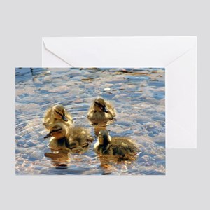 Four baby ducks Greeting Card