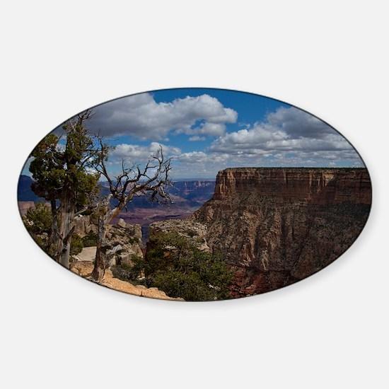 (18) Grand Canyon 5515 Sticker (Oval)