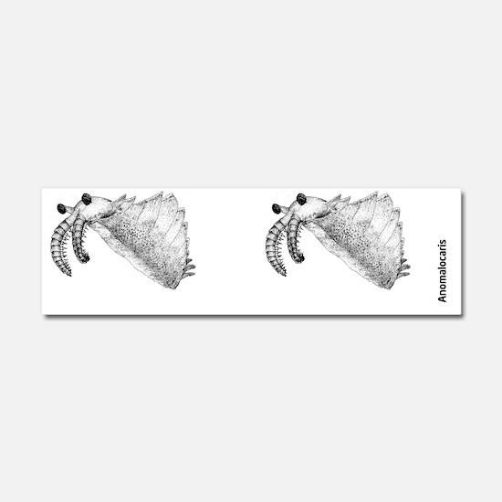 Anomalocaris Car Magnet 10 x 3
