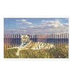 Tiger on the Beach Postcards (Package of 8)