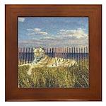 Tiger on the Beach Framed Tile
