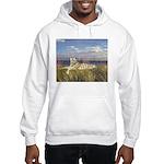 Tiger on the Beach Hooded Sweatshirt