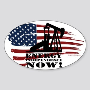 Energy Now Sticker (Oval)