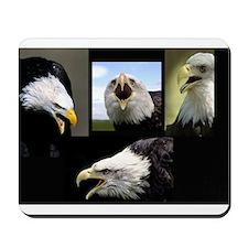 The Bald Eagle Mousepad