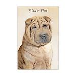 Shar Pei Mini Poster Print