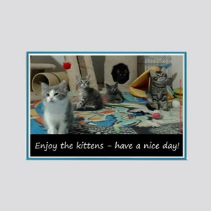 Enjoy The Kittens - Have A Nice Day! Magnets