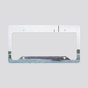 greenling framed panel print License Plate Holder