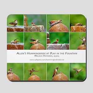 Allens Hummingbird Calendar Mousepad
