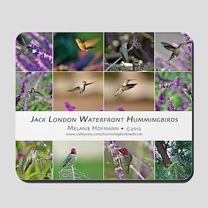 Jack London Hummingbird Calendar Mousepad