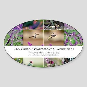 Jack London Hummingbird Calendar Sticker (Oval)