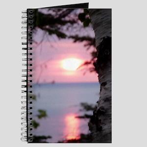 LkSup2.2x4.56 Journal