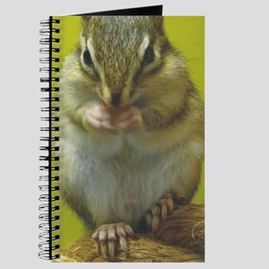 chipmunk iphnew Journal