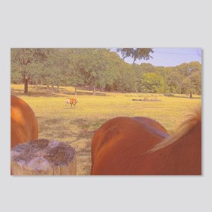 Oh Those Curves! Postcards (Package of 8)