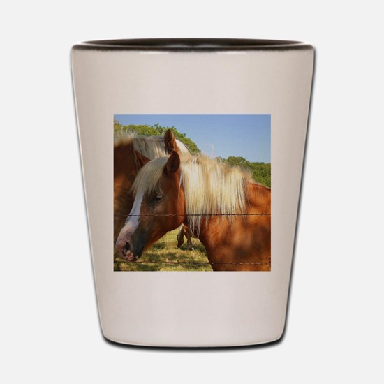 Secret Whispered Shot Glass