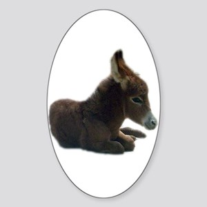 donkey colt Oval Sticker