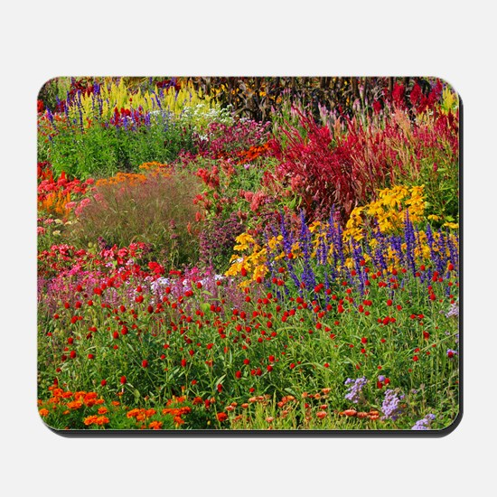 Picture 2137-1 Mousepad