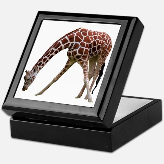 giraffeCutOut Keepsake Box
