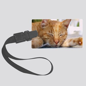 Snapper Large Luggage Tag
