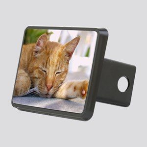 Snapper Rectangular Hitch Cover