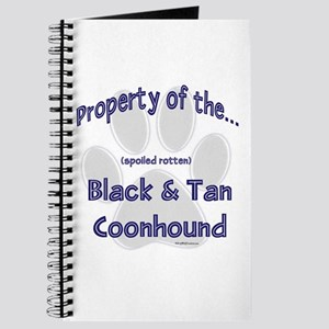 B & T Property Journal