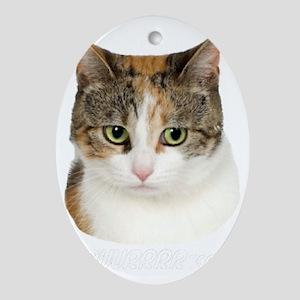 PUUURRRRRRfect DARK SHIRTS Oval Ornament