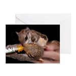 Me Too! Greeting Cards (Pk of 10)