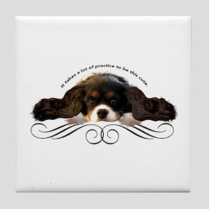 Cavalier Cute plain Tile Coaster