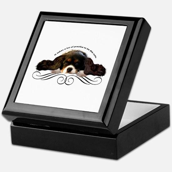 Cavalier Cute plain Keepsake Box