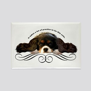 Cavalier Cute plain Rectangle Magnet