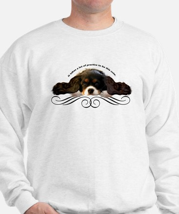 Cavalier Cute plain Sweatshirt