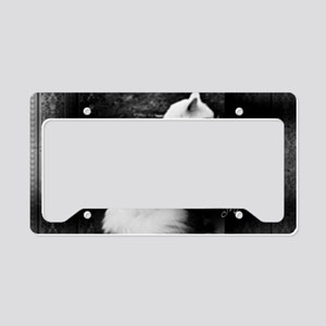 Il Gatto Bello License Plate Holder
