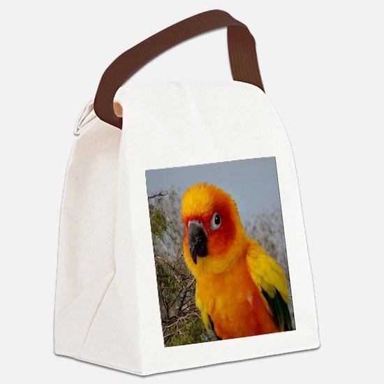 tacoIMG_2542 Canvas Lunch Bag