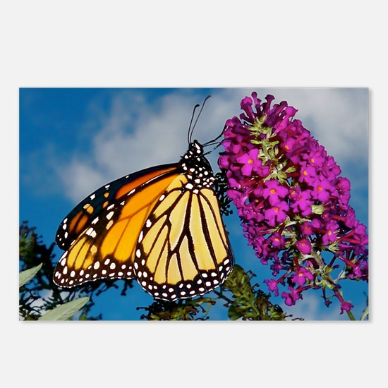 Monarch Butterfly Jigsaw  Postcards (Package of 8)