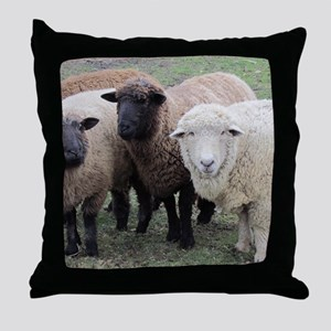 3 Sheep at Wachusett Throw Pillow