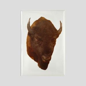 bison head Rectangle Magnet (10 pack)