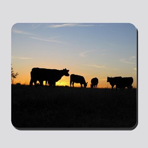 Cows at sundown Mousepad