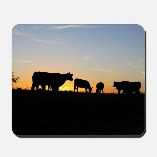 Cows at sundown Mousepad