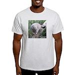 Pallas' cat Photo on an Ash Grey t-shirt.