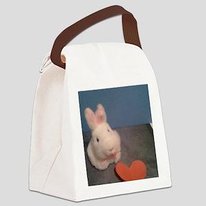 Stuff 2012 189 Canvas Lunch Bag