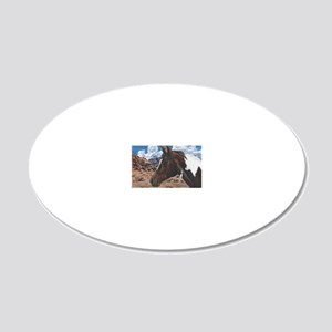 Paint Horse 20x12 Oval Wall Decal