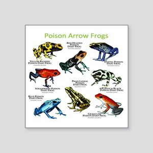 "Poison Dart Frogs of the Am Square Sticker 3"" x 3"""