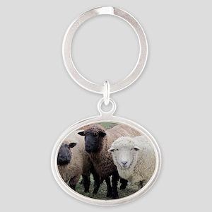 3 Sheep at Wachusett Oval Keychain