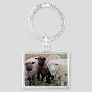 3 Sheep at Wachusett Landscape Keychain