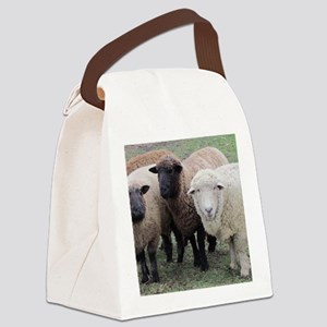 3 Sheep at Wachusett Canvas Lunch Bag