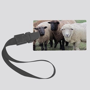 3 Sheep at Wachusett Large Luggage Tag