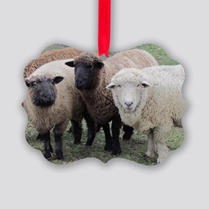3 Sheep at Wachusett Picture Ornament